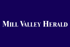 Artists to take over Mill Valley Lumber Co....