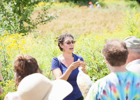 Wild Edibles walk at Red Fire Farm Tomato Festival