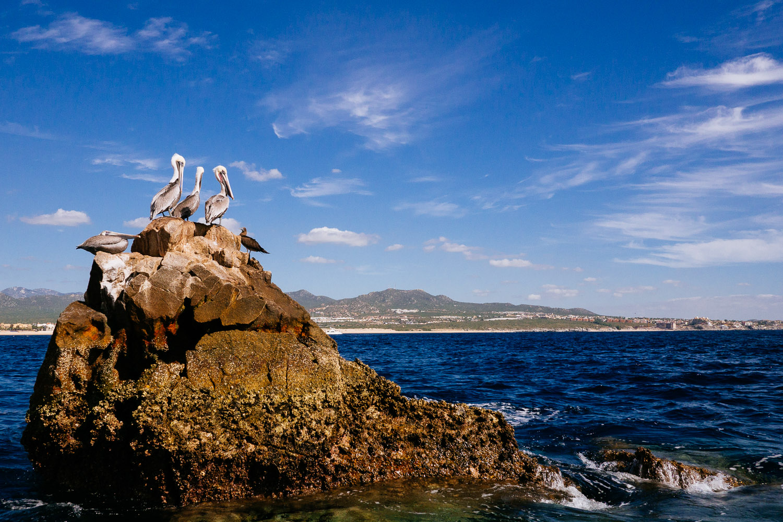 SqSpPort-Cabo-1080879.jpg