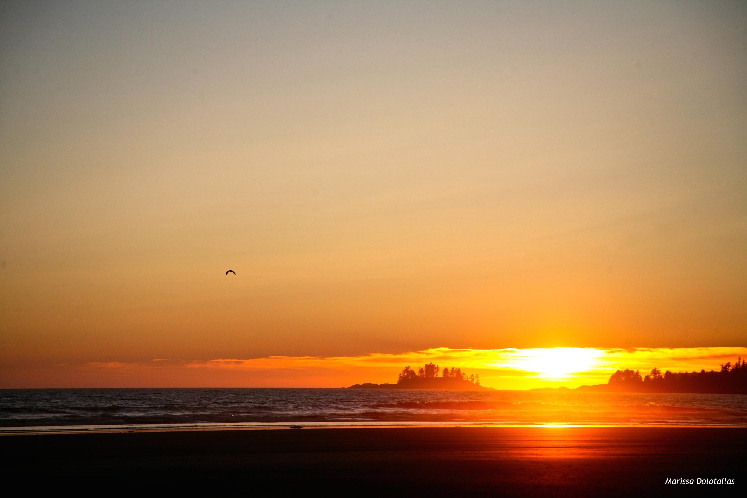 Sunset in Tofino, BC