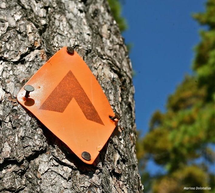Campsite marker