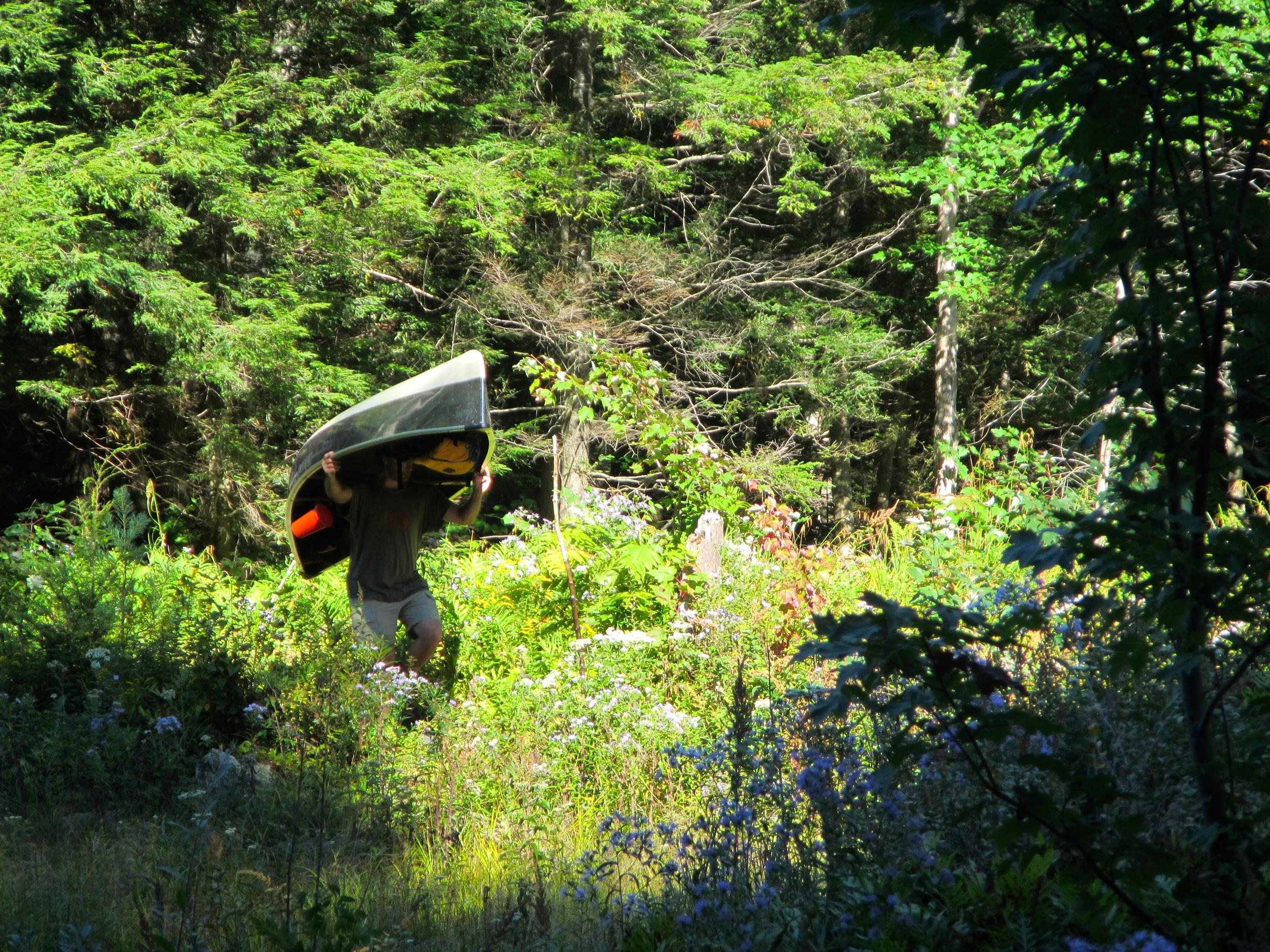 Portaging the canoe in the bush