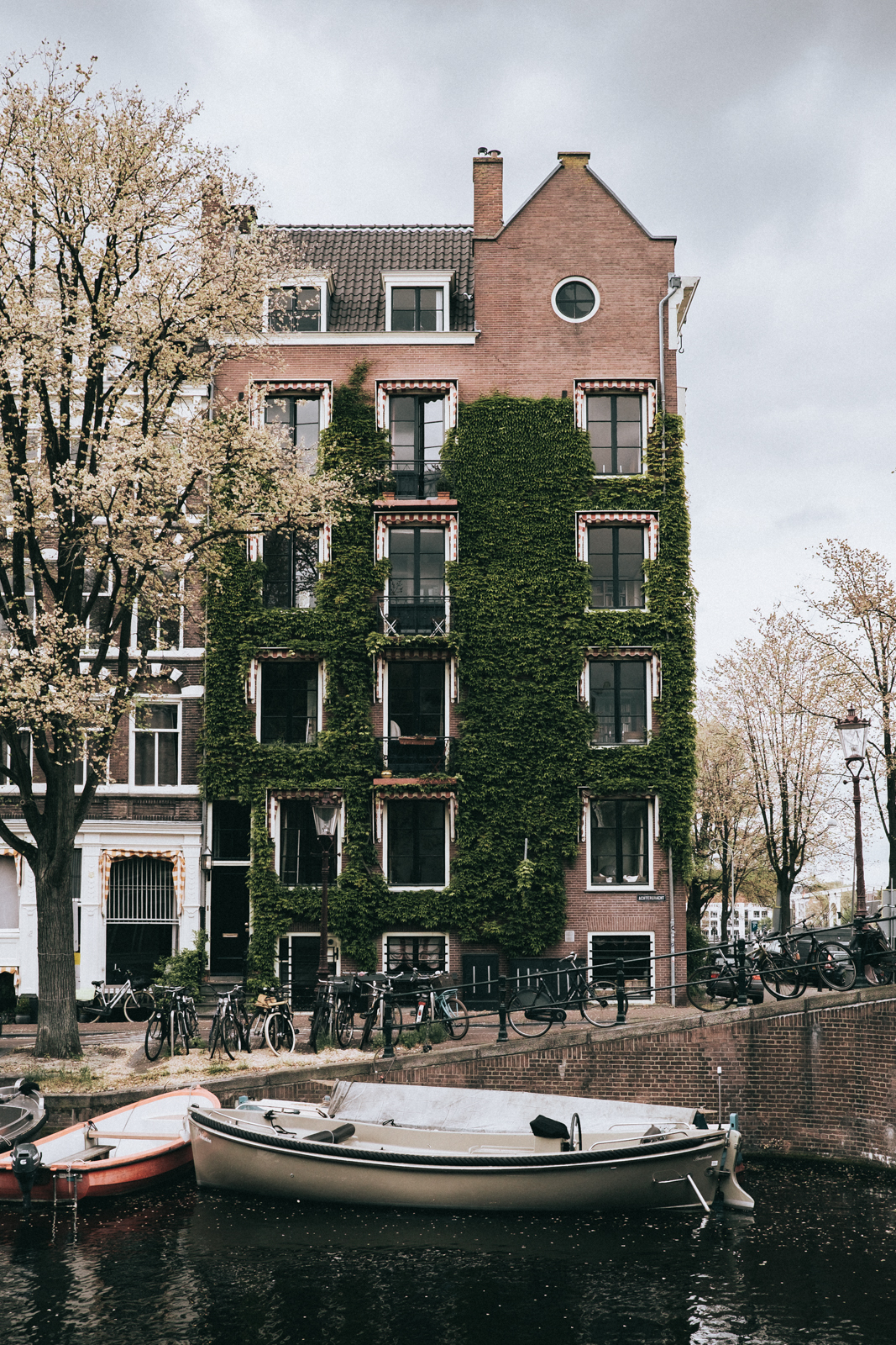 amsterdam-russell-rabanal-7786.jpg
