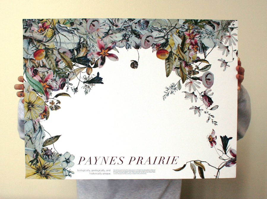 paynes2.png