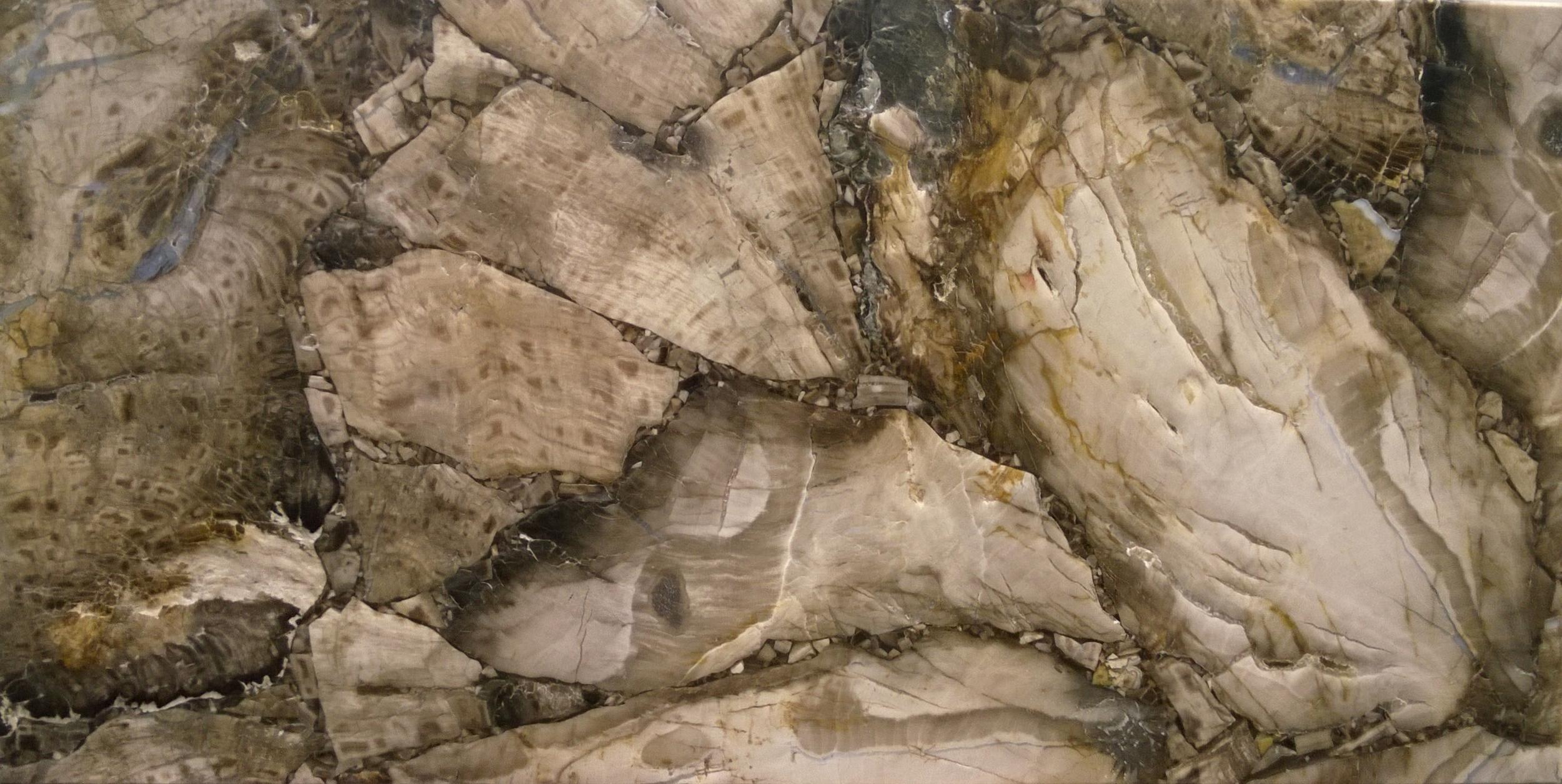 White Petrified Wood - Leather Finish