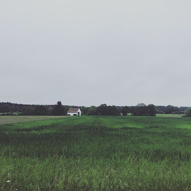 Bavaria. Born from fields. Endless greens.