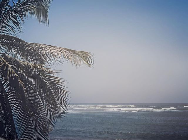 Morning |  Church . .  #surftrip #saladita #zihuatanejo