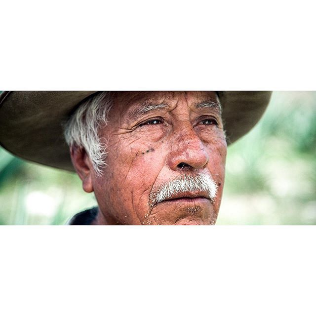 Mezcalero De Por Vida | Felipe⠀ Another screen grab from the Maguey Melate project in Oaxaca.⠀ ⠀ .⠀ .⠀ .⠀ .⠀ .⠀ #Mezcal #Mezcalero #Maguey #Agave #MezcalLover #Oaxaca #Wanderlust #Cinematographer #Portraits #filmmaking #setlife #REDGemini #RedDigitalCinema #photooftheday #photography #picoftheday #instagood #portraiture