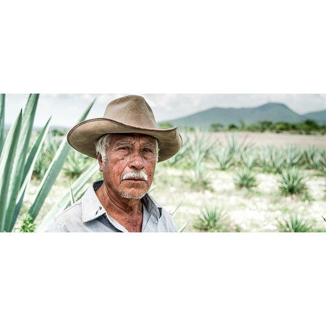 Palenque Espadine⠀ .⠀ .⠀ .⠀ .⠀ .⠀ ⠀ #Mezcal #Mezcalero #Maguey #Agave #Espadine #MezcalLover #Oaxaca #Wanderlust #Cinematographer #Portraits #filmmaking #setlife #REDGemini #RedDigitalCinema #photooftheday #photography #picoftheday #instagood #portraiture