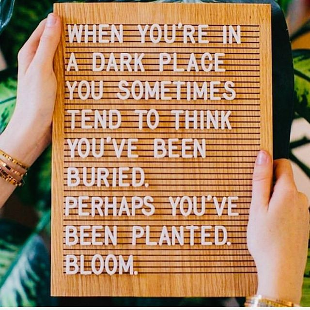 #bloom #grow #planted #madenew #positivequotes