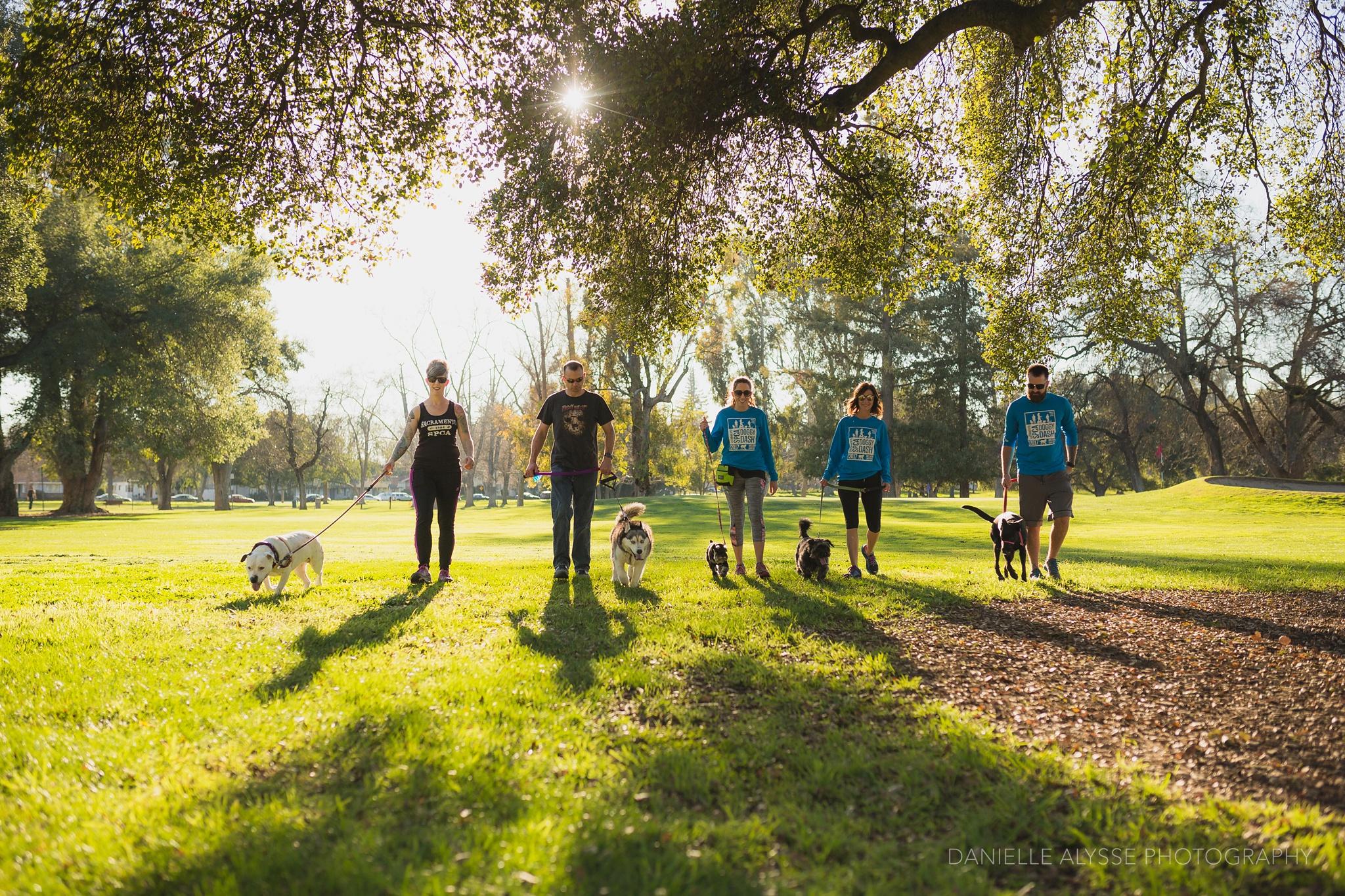 180205_sspca_spca_willam_land_park_doggy_dash_california_danielle_alysse_photography_sacramento_pet_dog_photographer_3_WEB.jpg