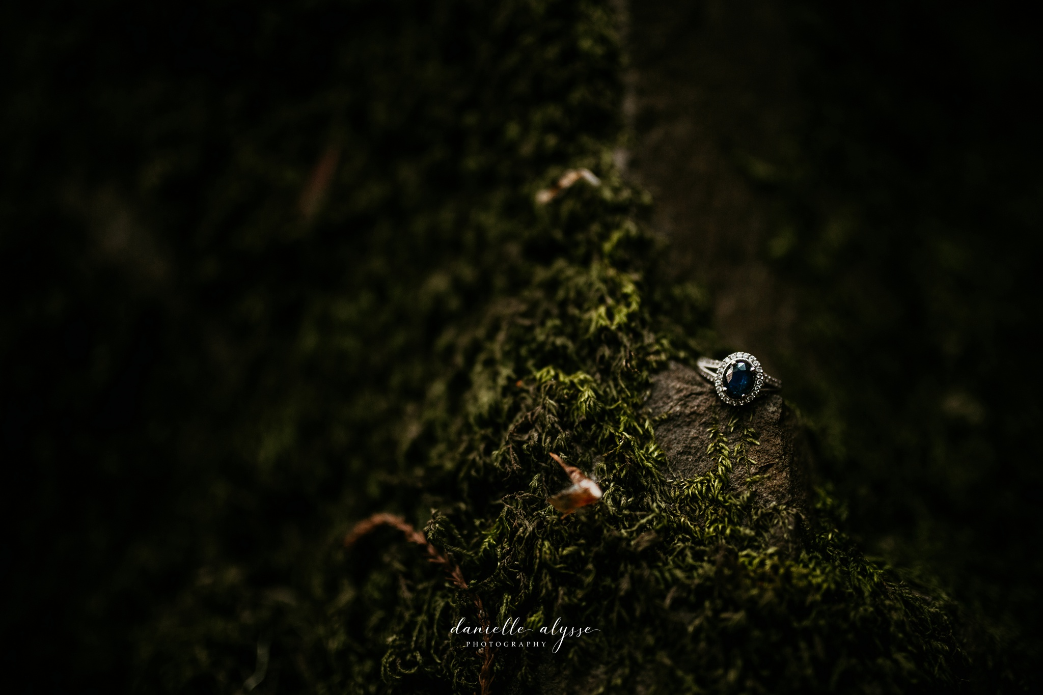 180503_engagement_bianca_muir_woods_mill_valley_danielle_alysse_photography_bay_area_photographer_blog_41_WEB.jpg