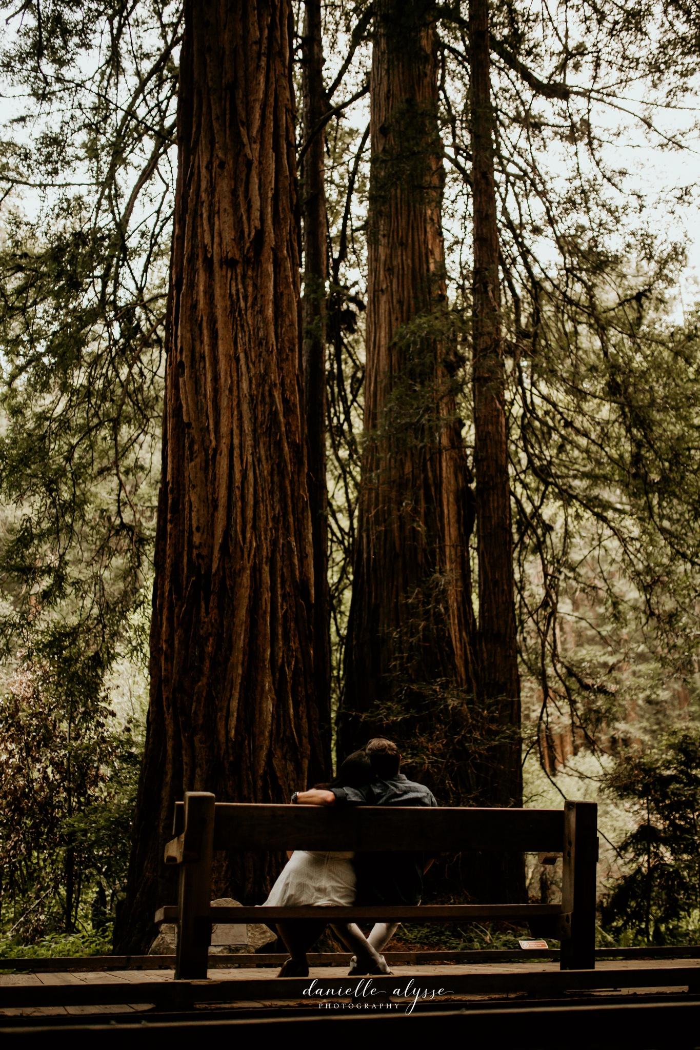 180503_engagement_bianca_muir_woods_mill_valley_danielle_alysse_photography_bay_area_photographer_blog_66_WEB.jpg