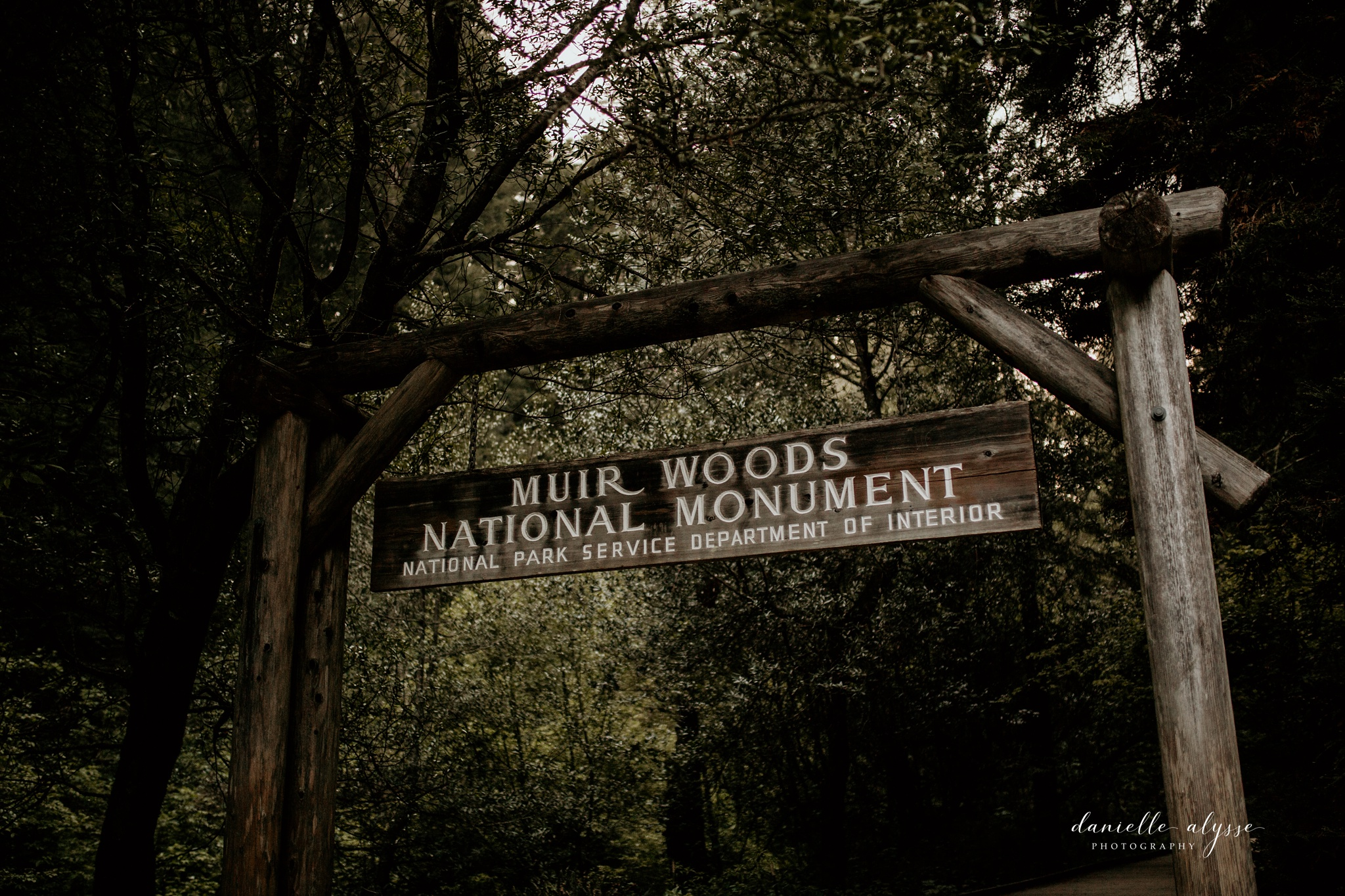 180503_engagement_bianca_muir_woods_mill_valley_danielle_alysse_photography_bay_area_photographer_blog_82_WEB.jpg