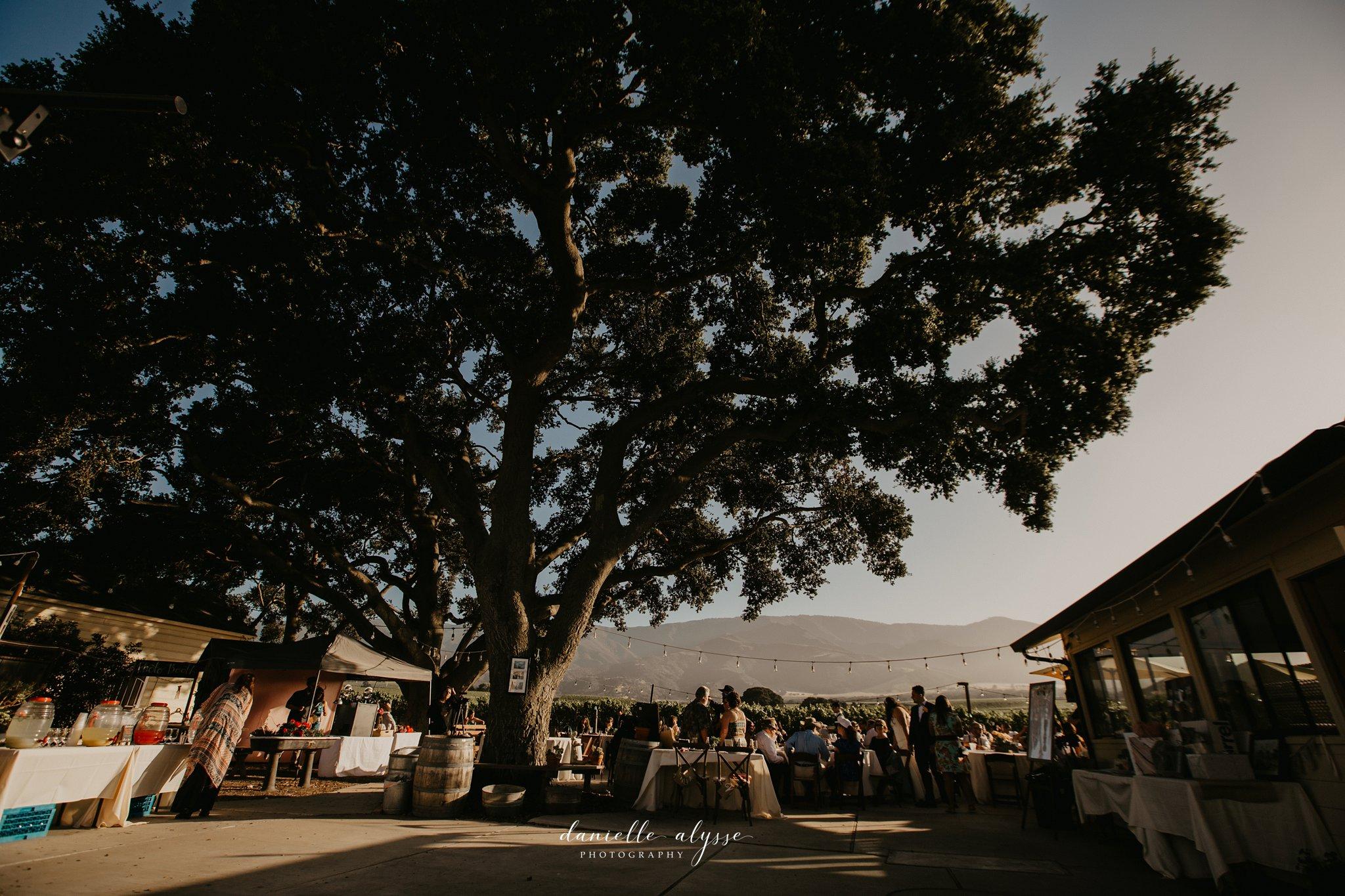 180630_wedding_lily_ryan_mission_soledad_california_danielle_alysse_photography_blog_943_WEB.jpg