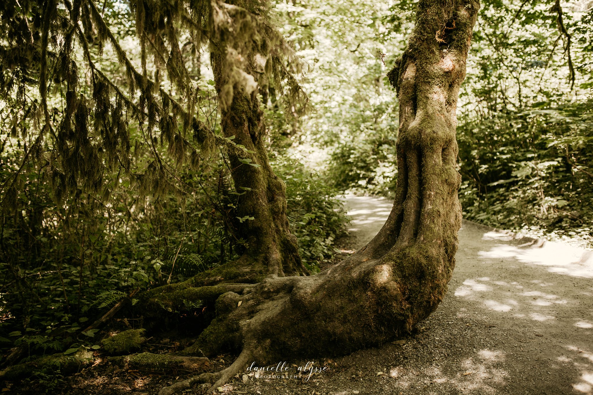 180720_travel_washington_destination_seattle_danielle_alysse_photography_blog_220_WEB.jpg
