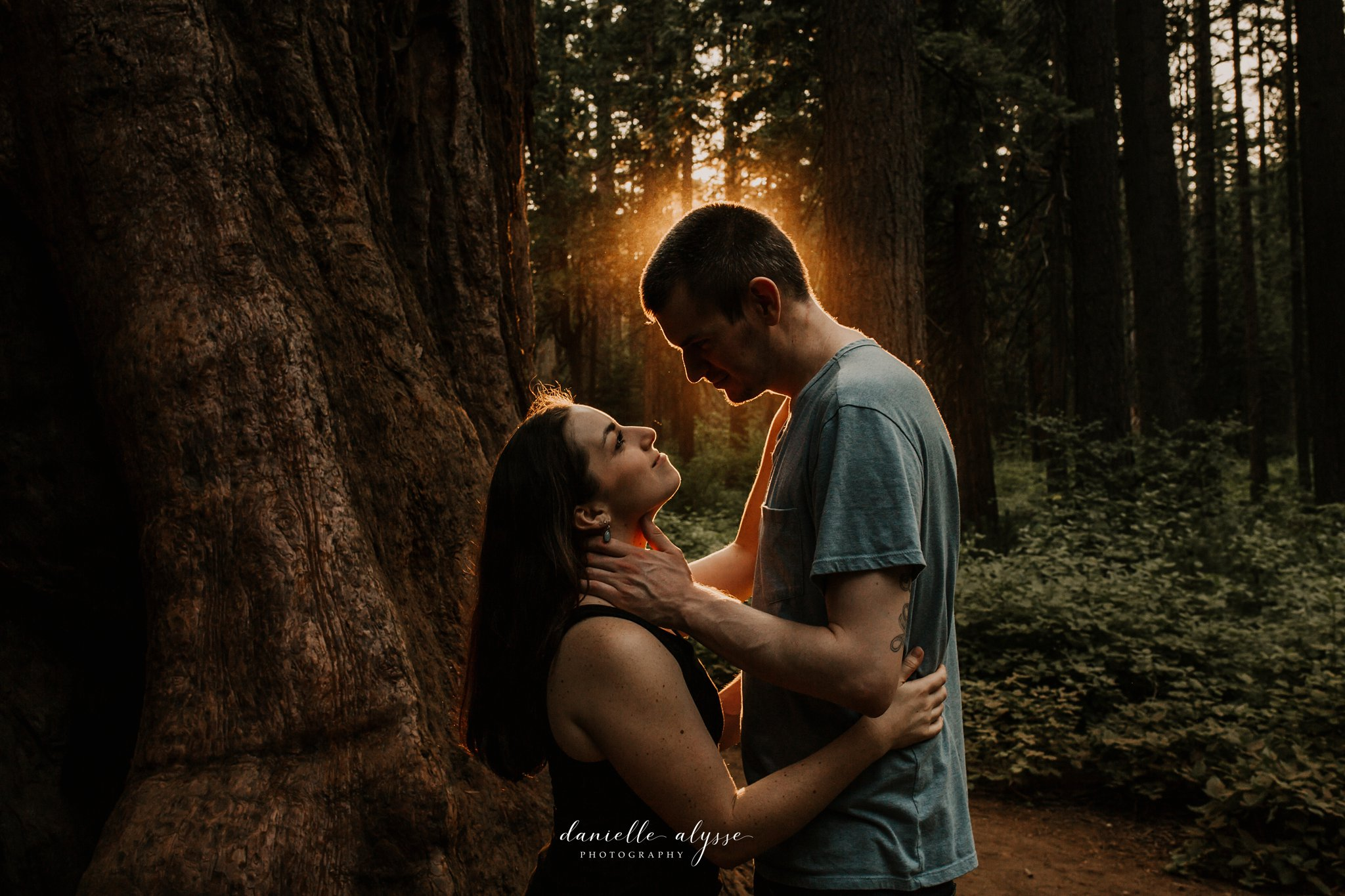 180811_engagement_kathryn_calvaras_big_trees_park_arnold_danielle_alysse_photography_blog_72_WEB.jpg