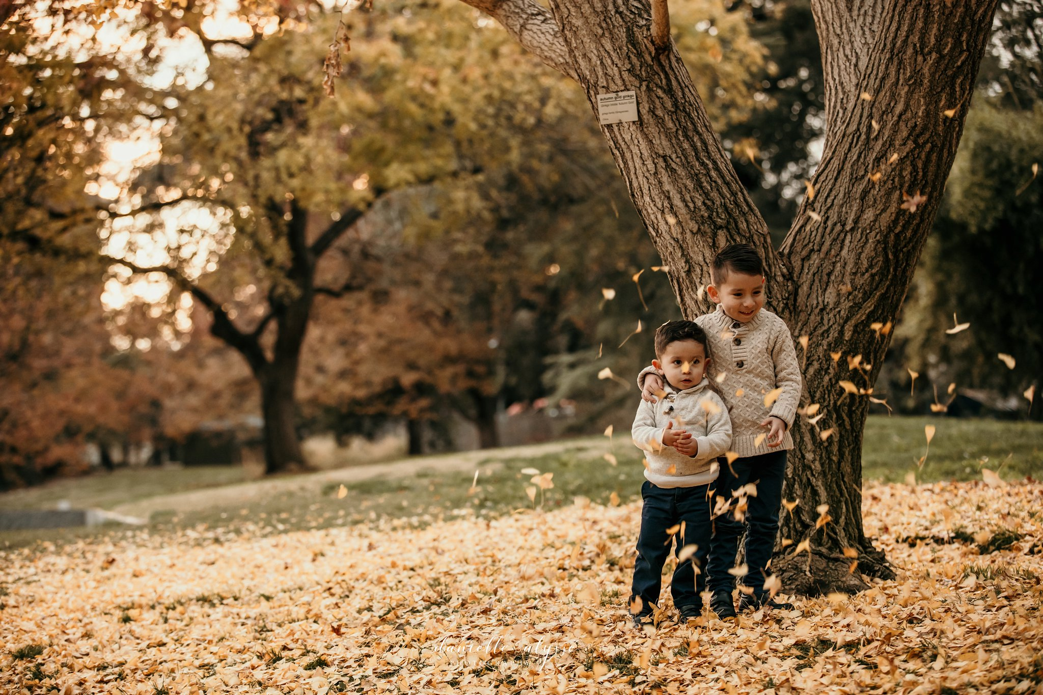 181205_family_portrait_fall_davis_arboretum_andrea_danielle_alysse_photography_40_WEB.jpg
