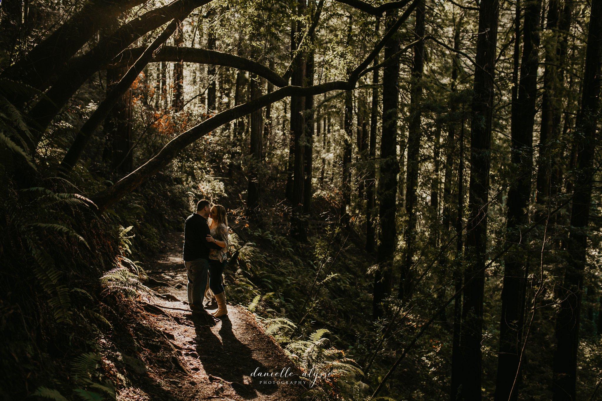 190205_engagement_jen_steven_muir_woods_mill_valley_danielle_alysse_photography_peek_3_WEB.jpg