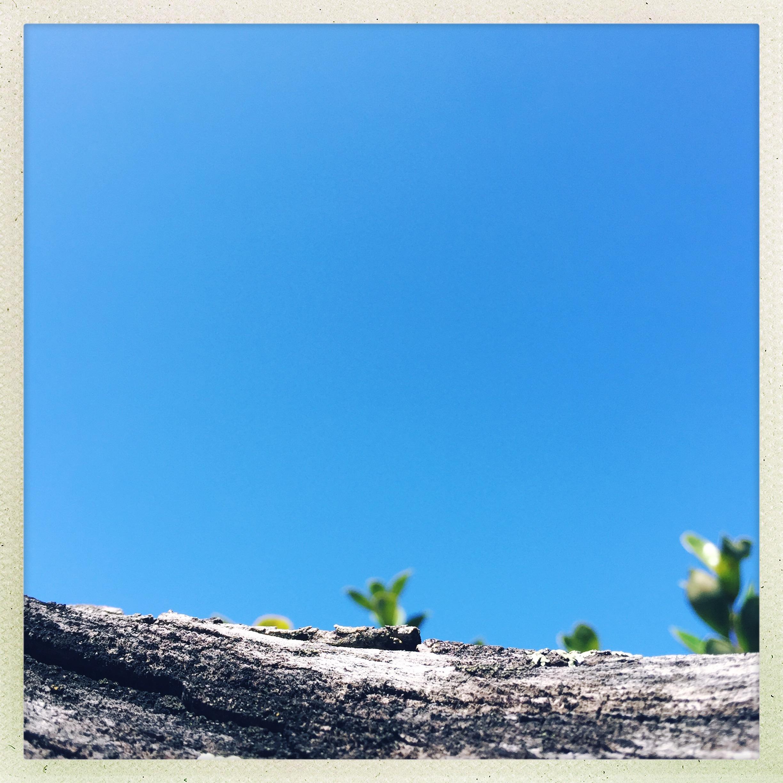 Warm blue.