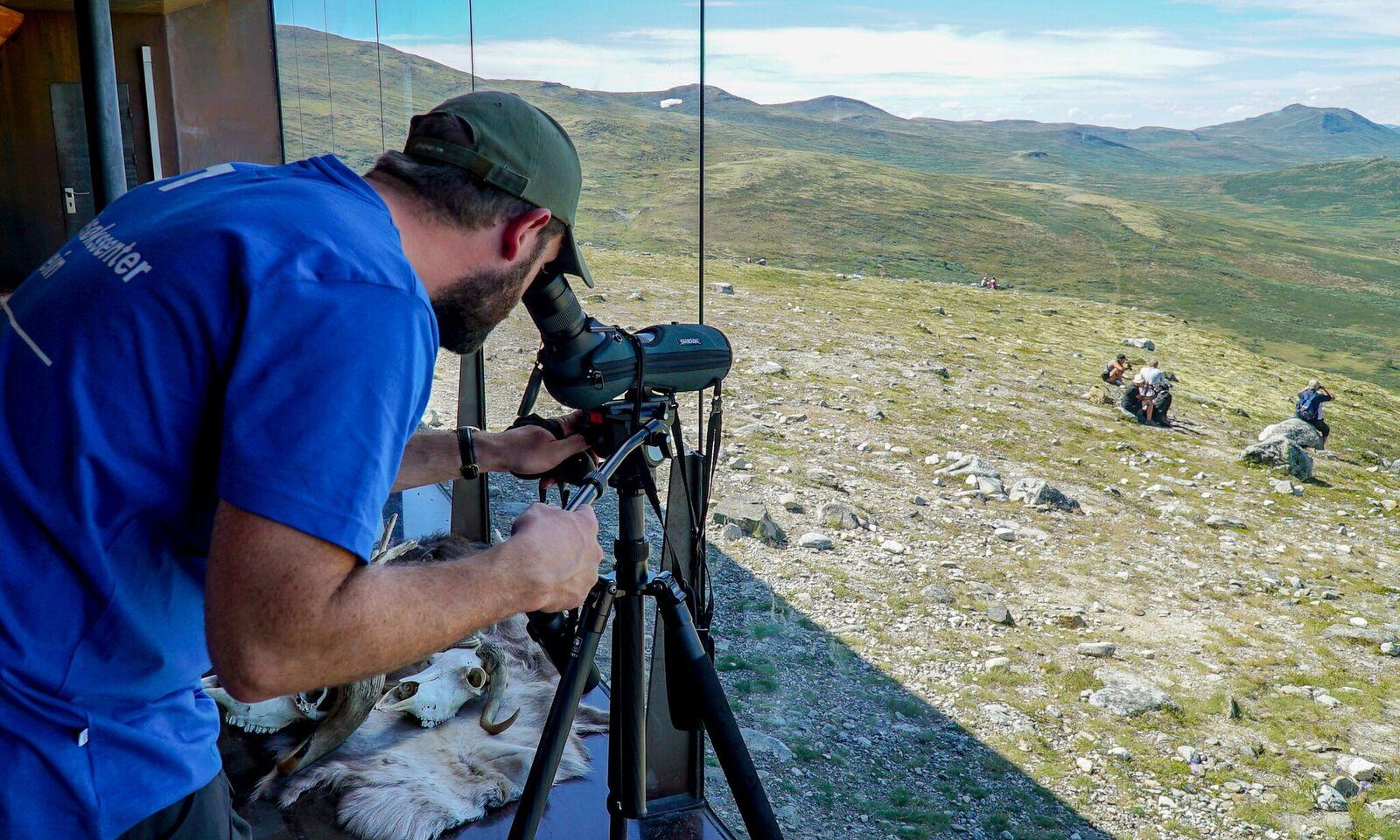 Speiding i teleskop fra viewpoint Snøhetta kan resultere i både villrein og moskus.  Foto: Rebecca Nedregotten Strand
