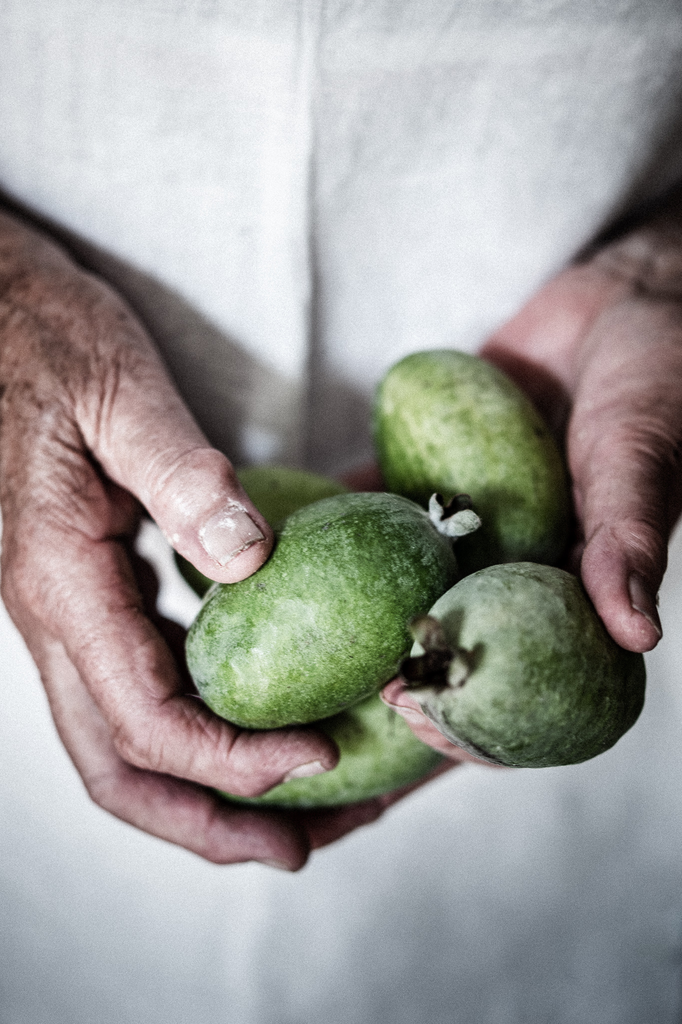 Feijoas Straight From The Tree