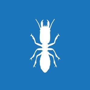 Banner-TALL-Termites.jpg