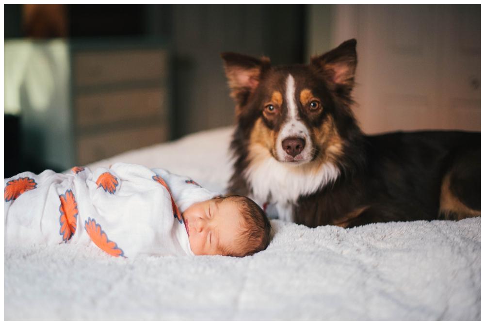 newborn_stephen_51.jpg