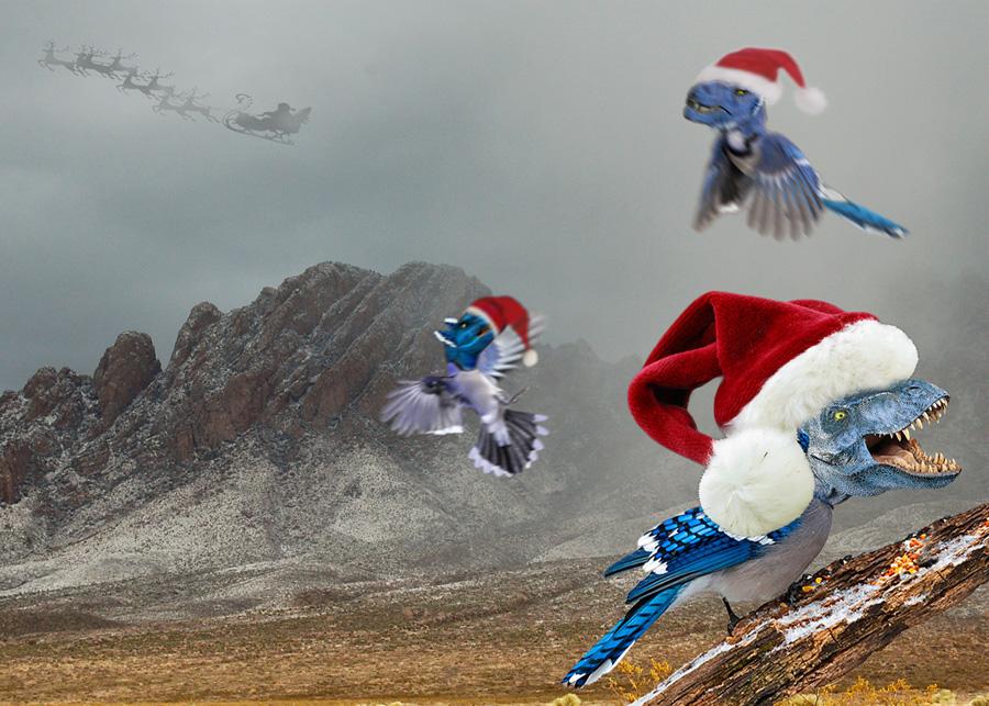 rare-nature-print-1-happy-christmas-web.jpg