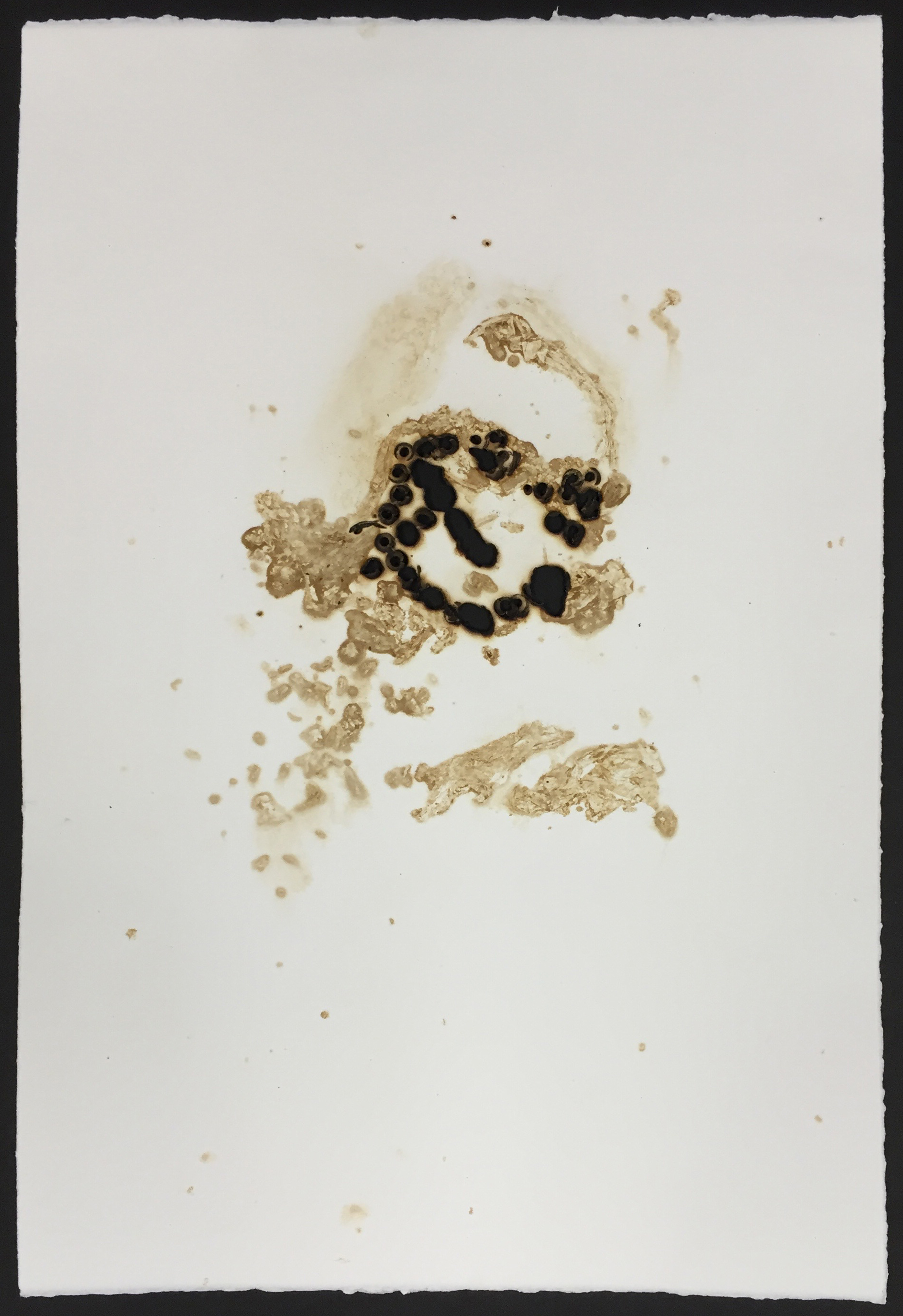 Tobacco print with scorched paper  15x22