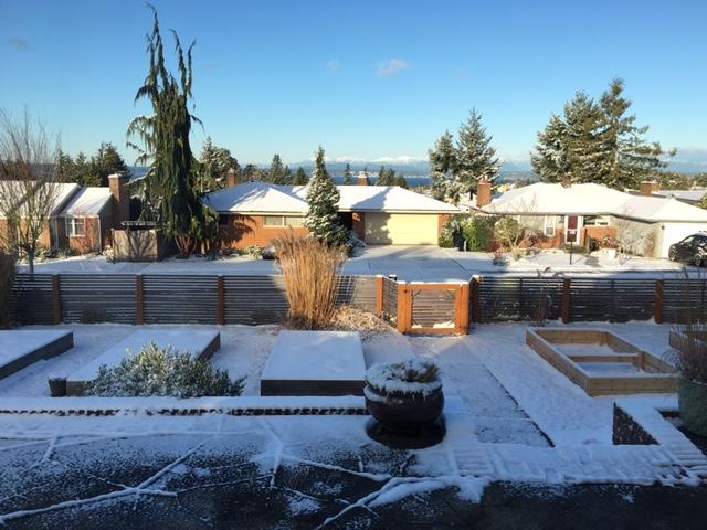 west seattle snow 2.18.jpg