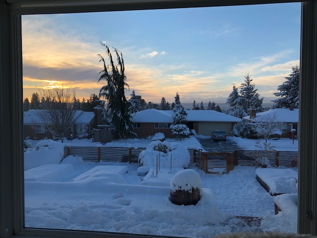 snow at dusk.jpg