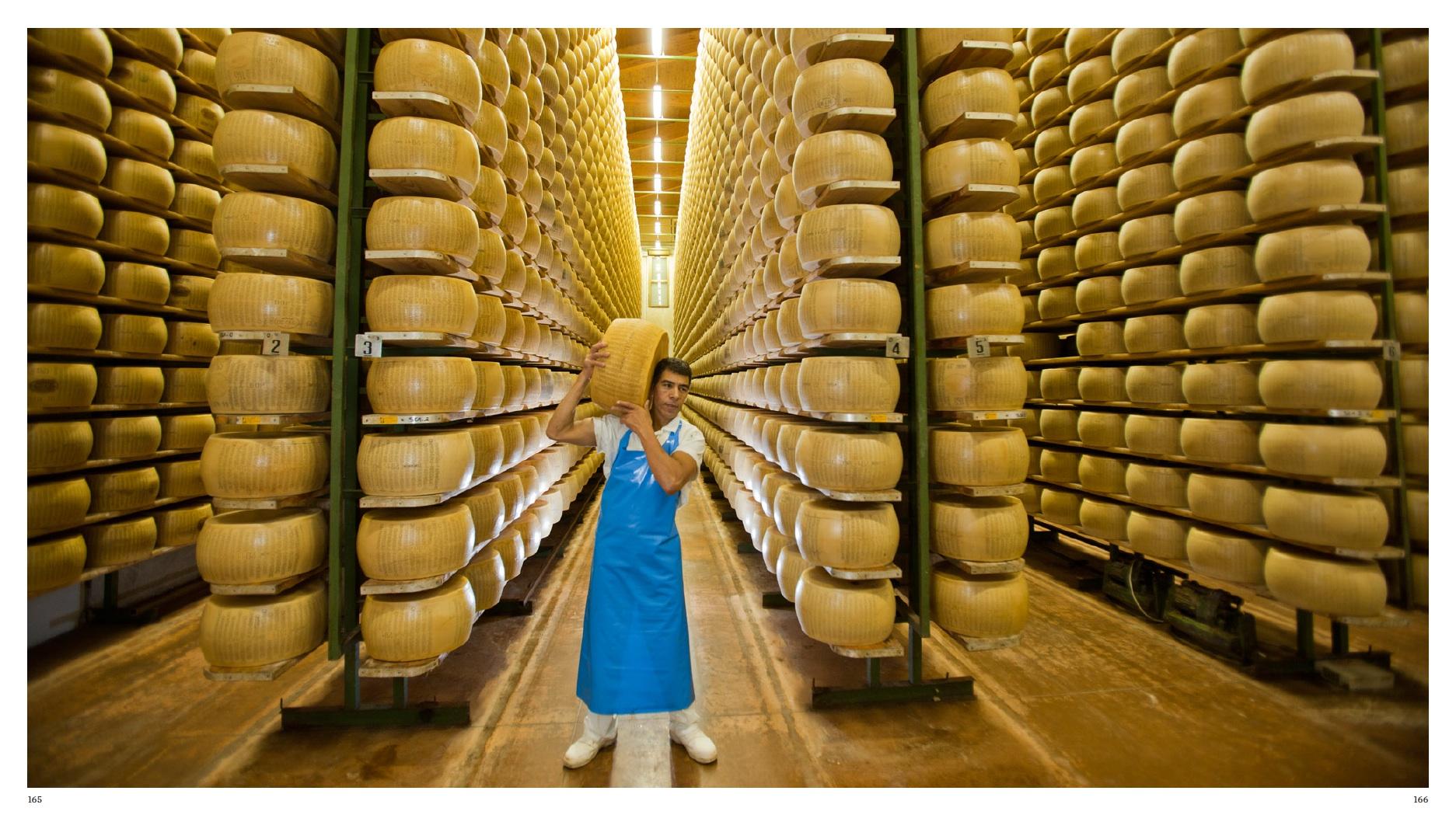 Parmesan Cheese producer, Latteria Sociale di Bagnolo in Reggia Emilia, Italy
