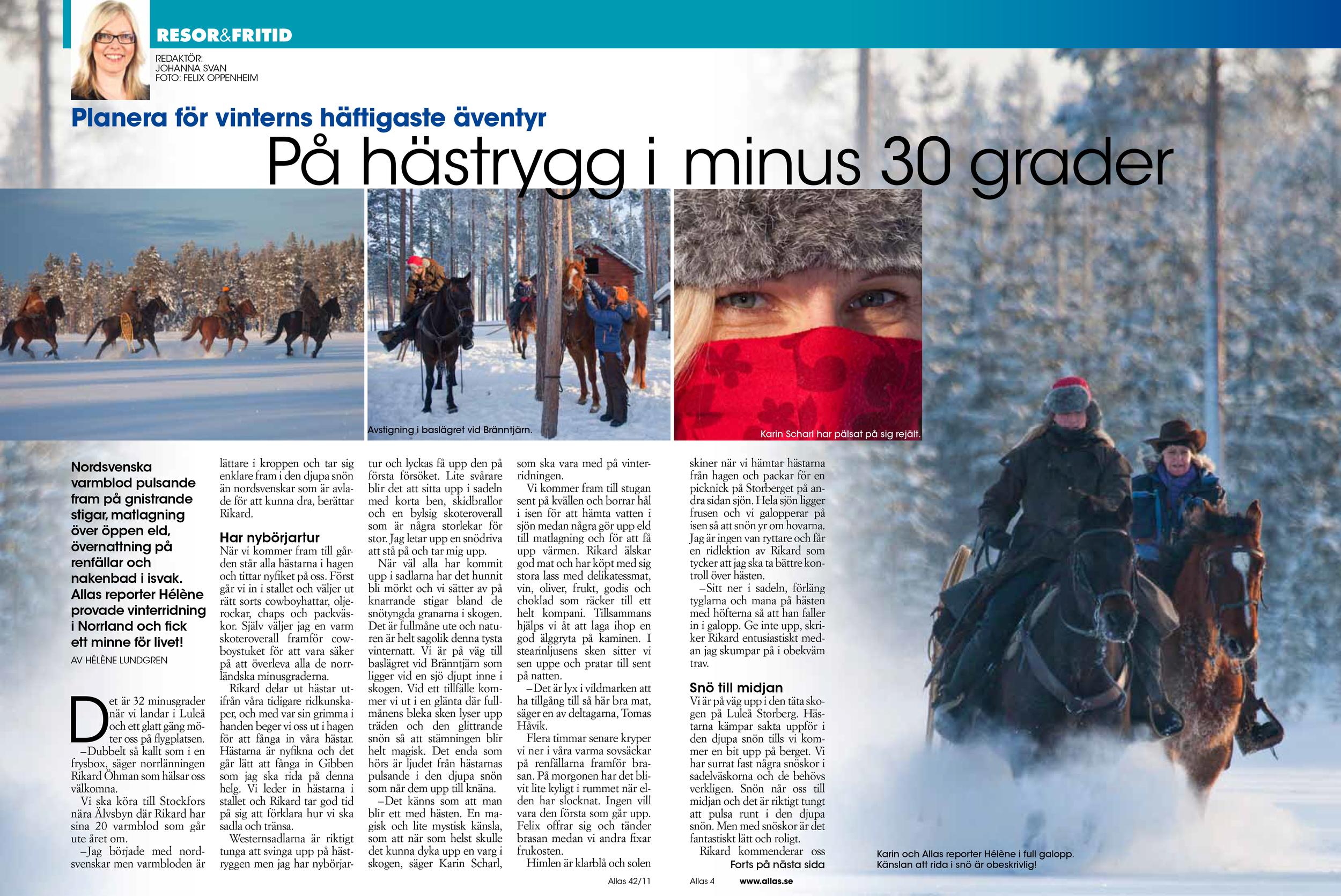 HÄSTJOBB-1 copy.jpg