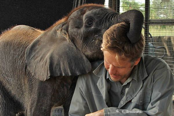 Mike with baby elephant.jpg