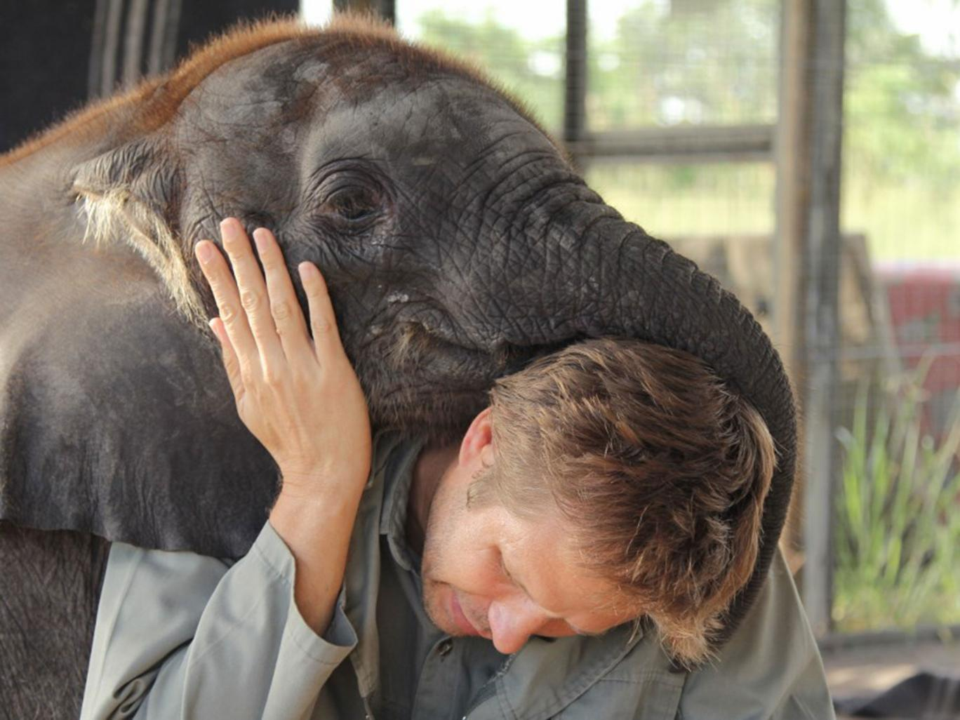 Dr. Mike Chase with sweet natured Naledi at his research station in the Okavango Delta.