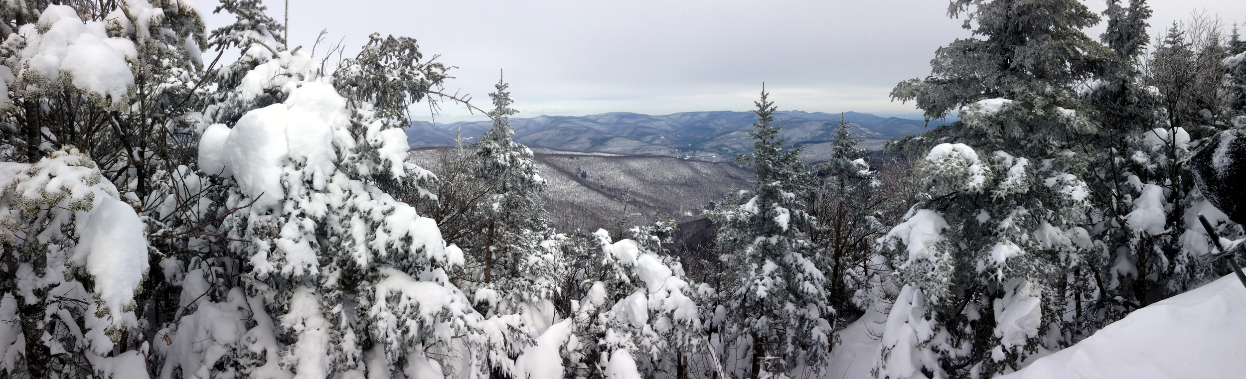 View from the summit of Panther Mountain