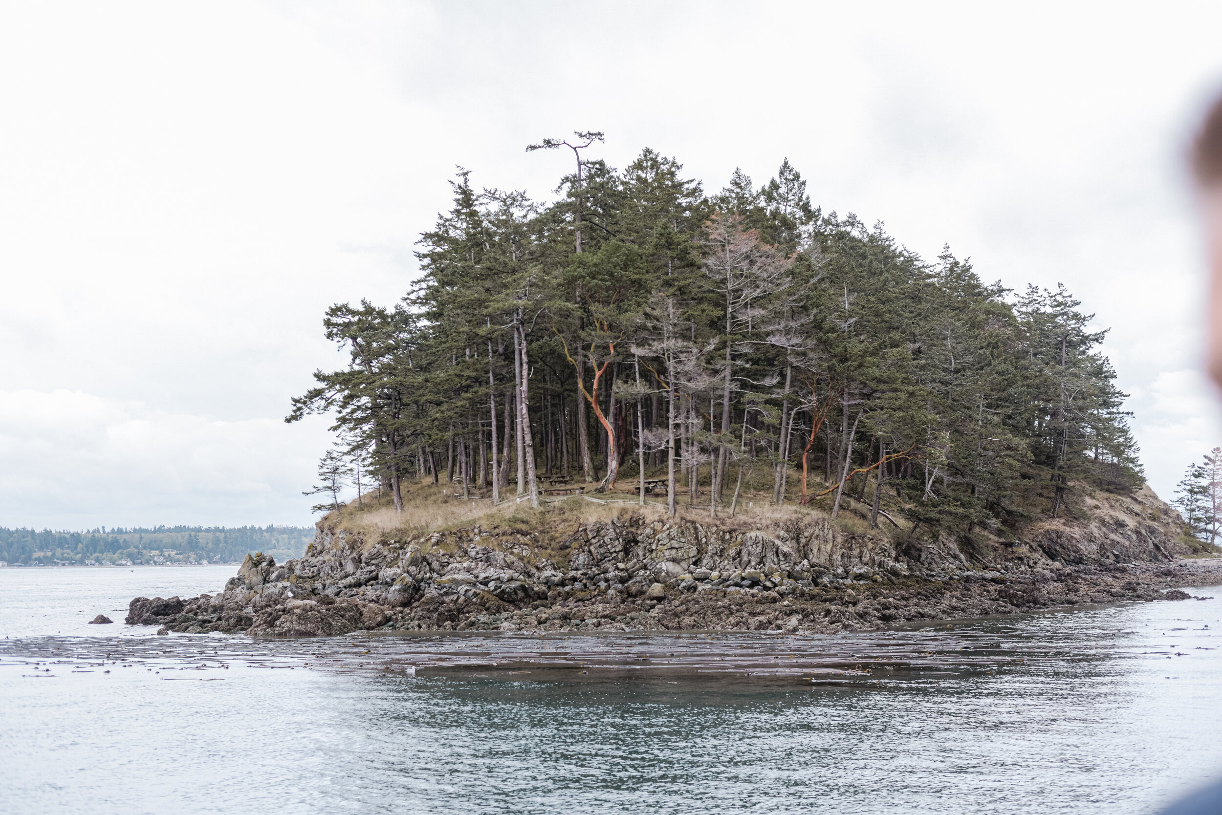 our home - cypress island