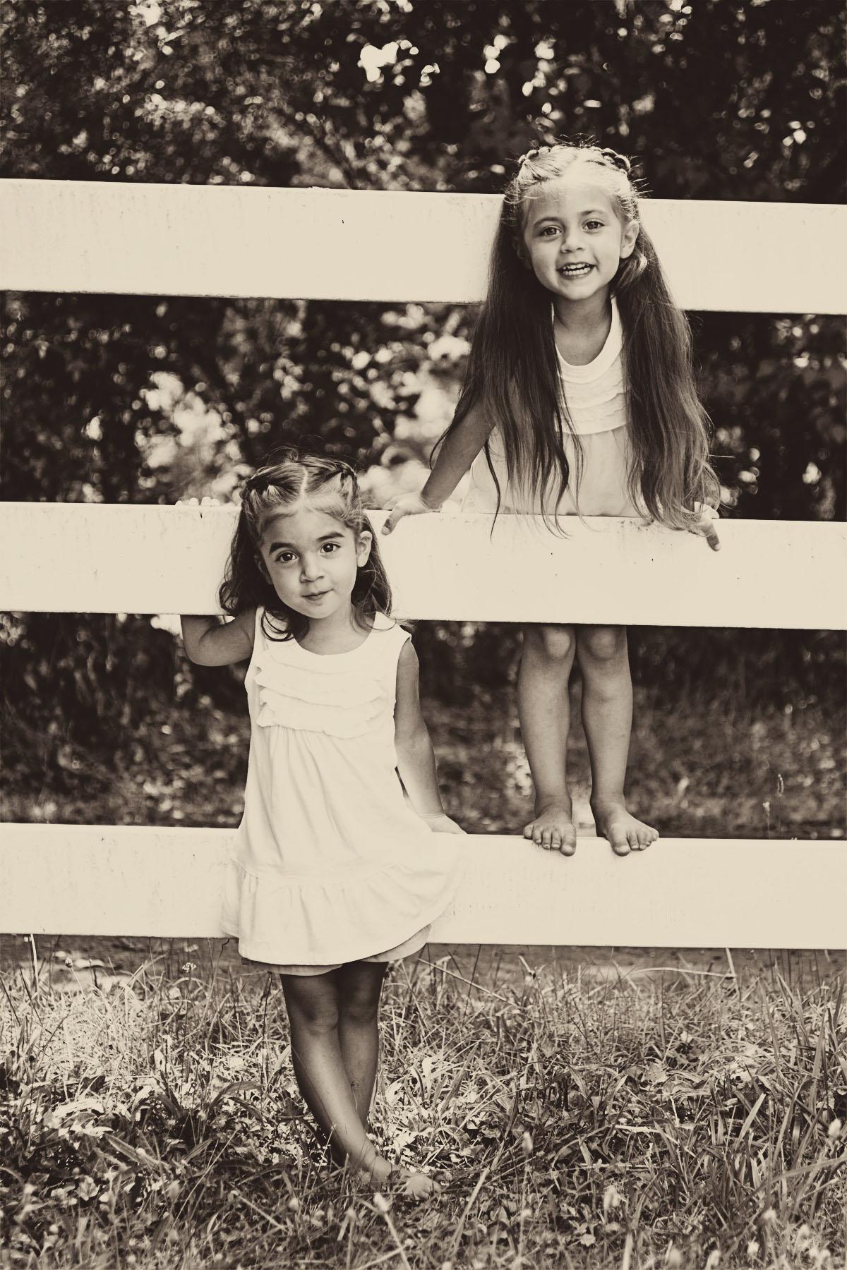 sistersfencesepia_1.jpg