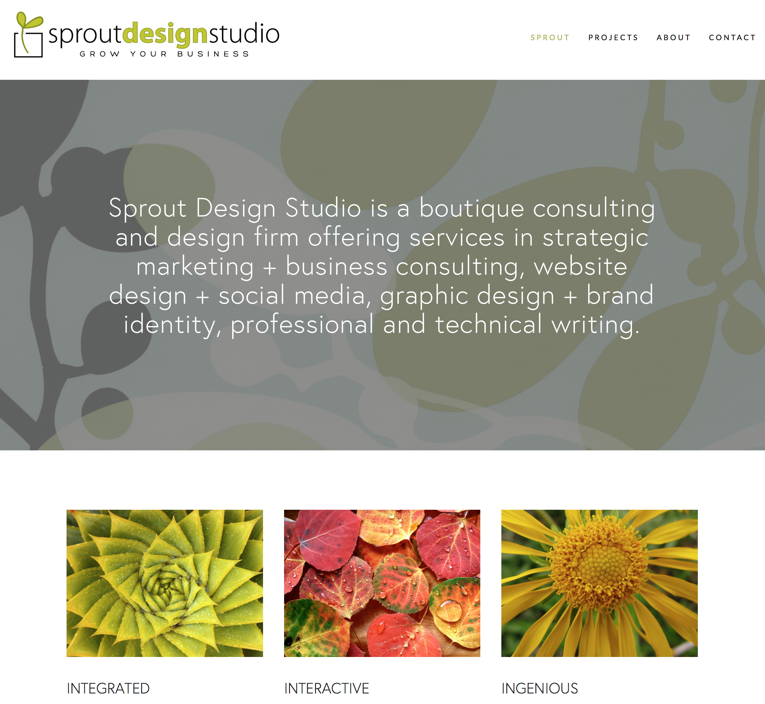 Sprout Design Studio's New Website