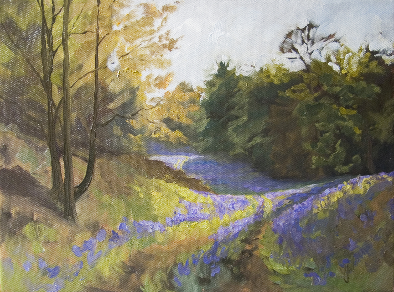 Morning bluebells 30x40cm