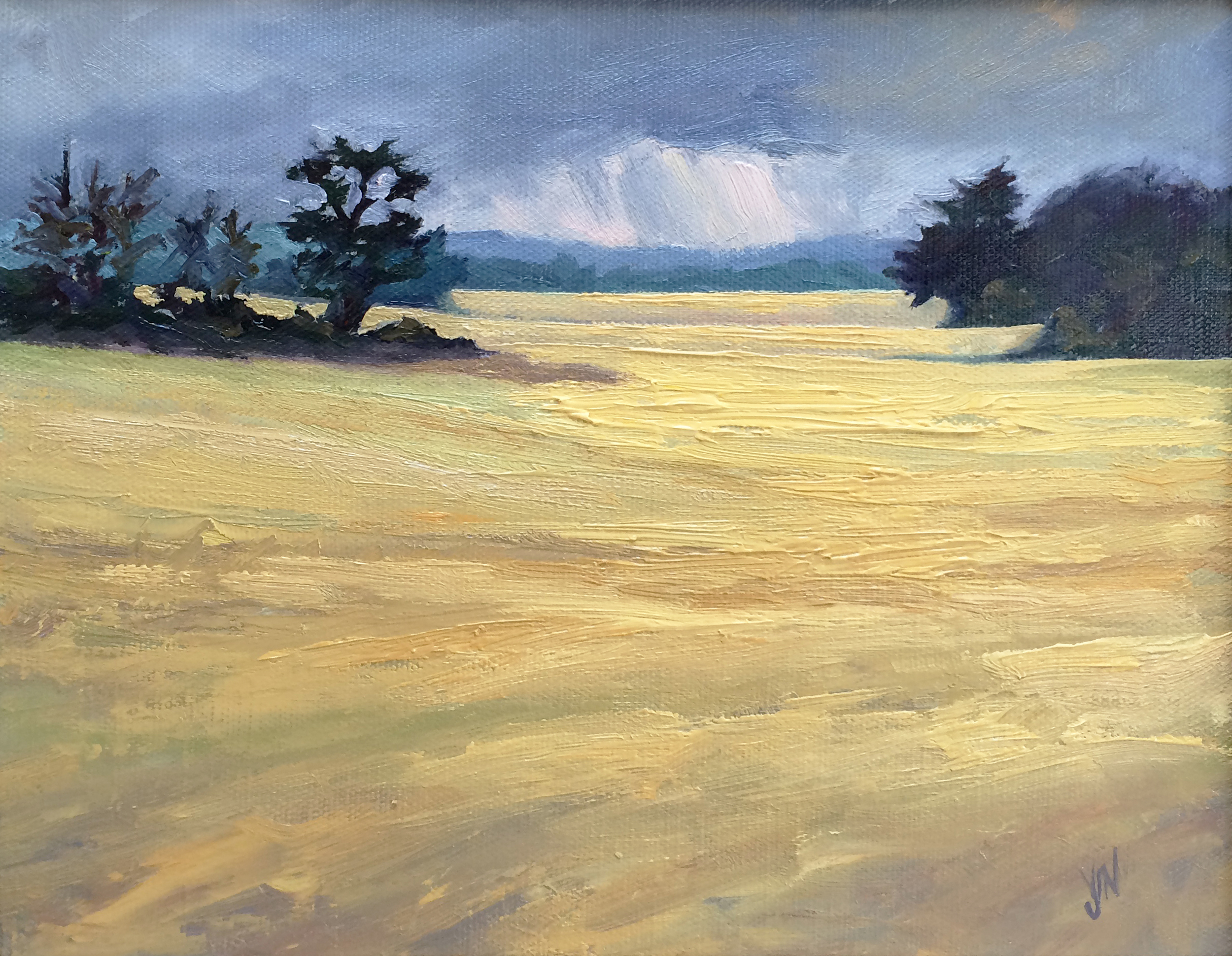 Liquid Gold...with another of those rain showers on the way, I got completely drowned painting this one!