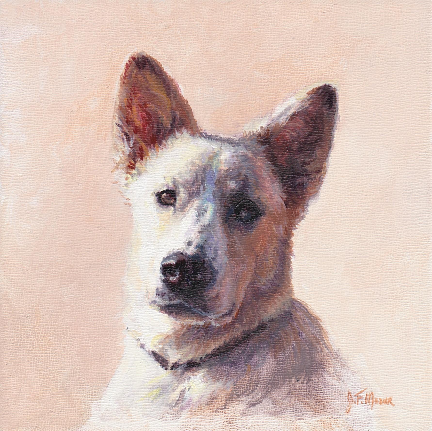 Jocelyn's Dog.jpg