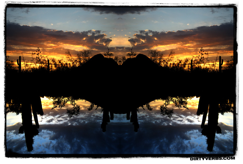 saguarosunset-portrait.jpg