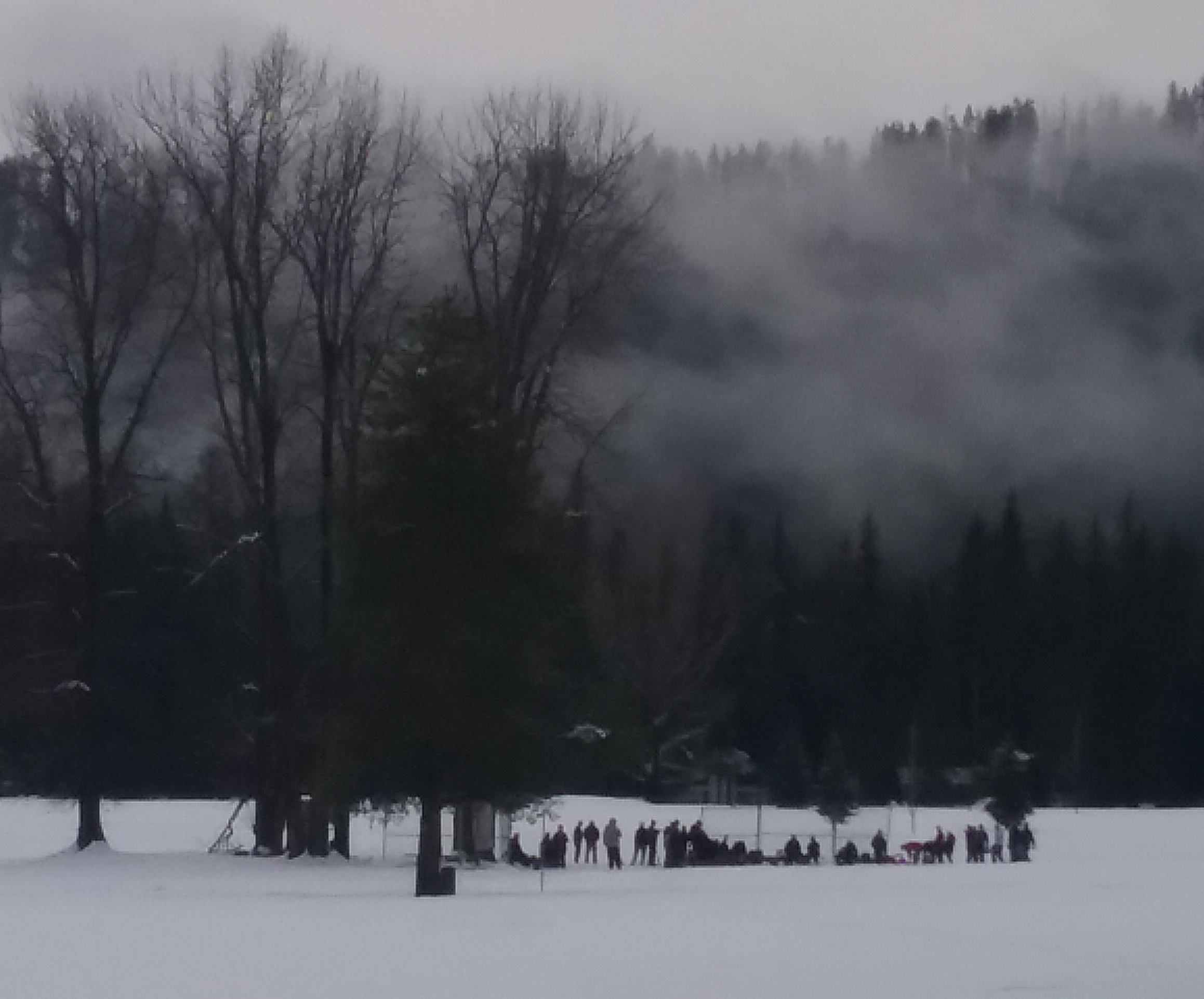 Snowshoe 2018 (4).jpg
