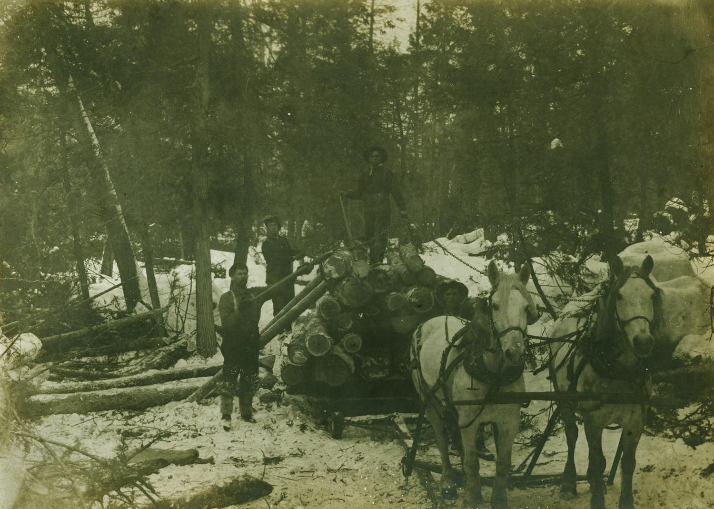 Pearce Lumber Camp