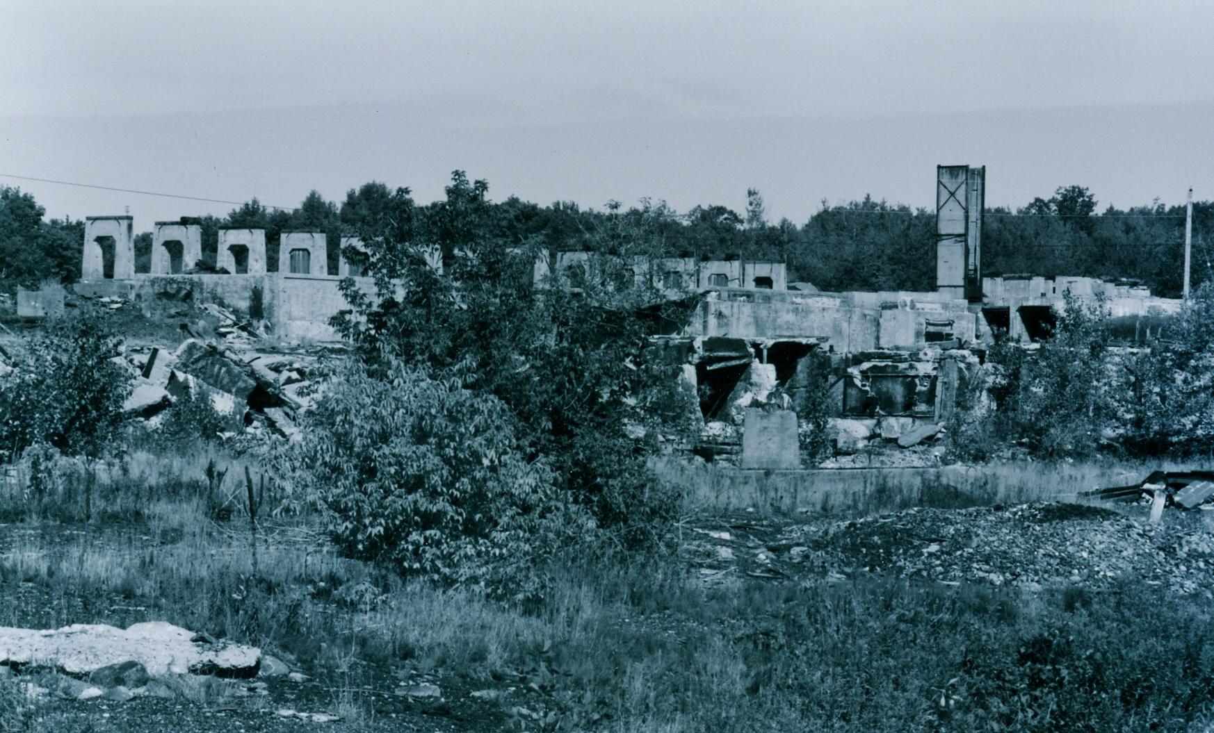 Ruins of Deloro Mine Site