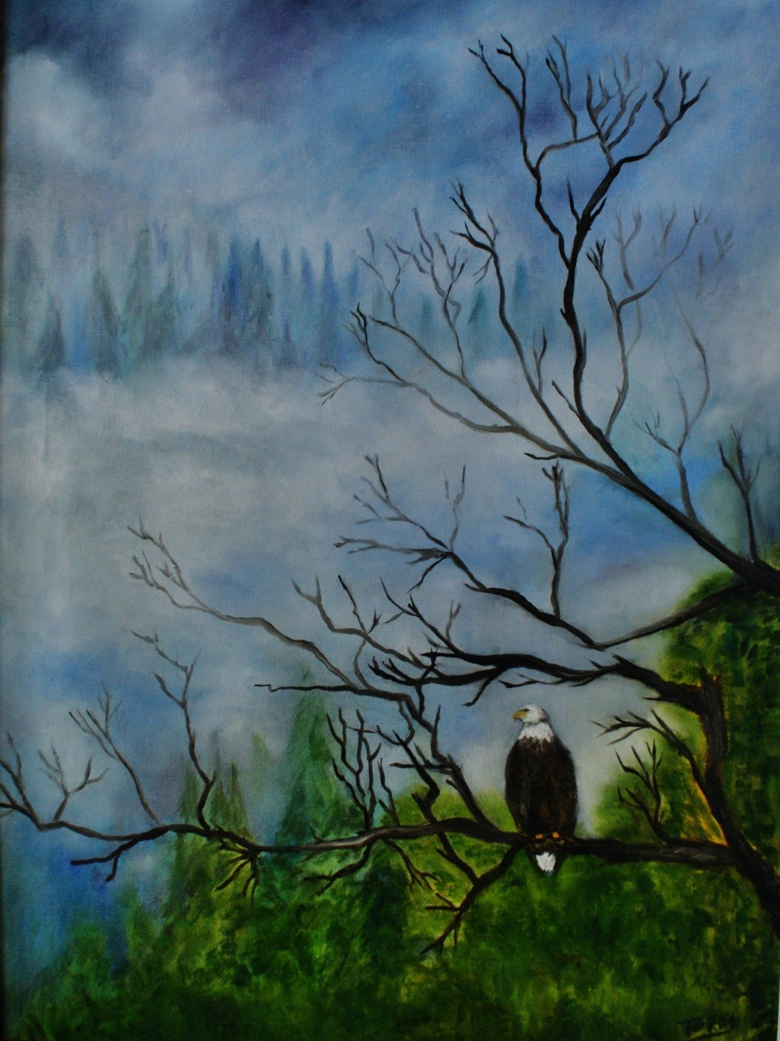 #131 Eagle in Juneau