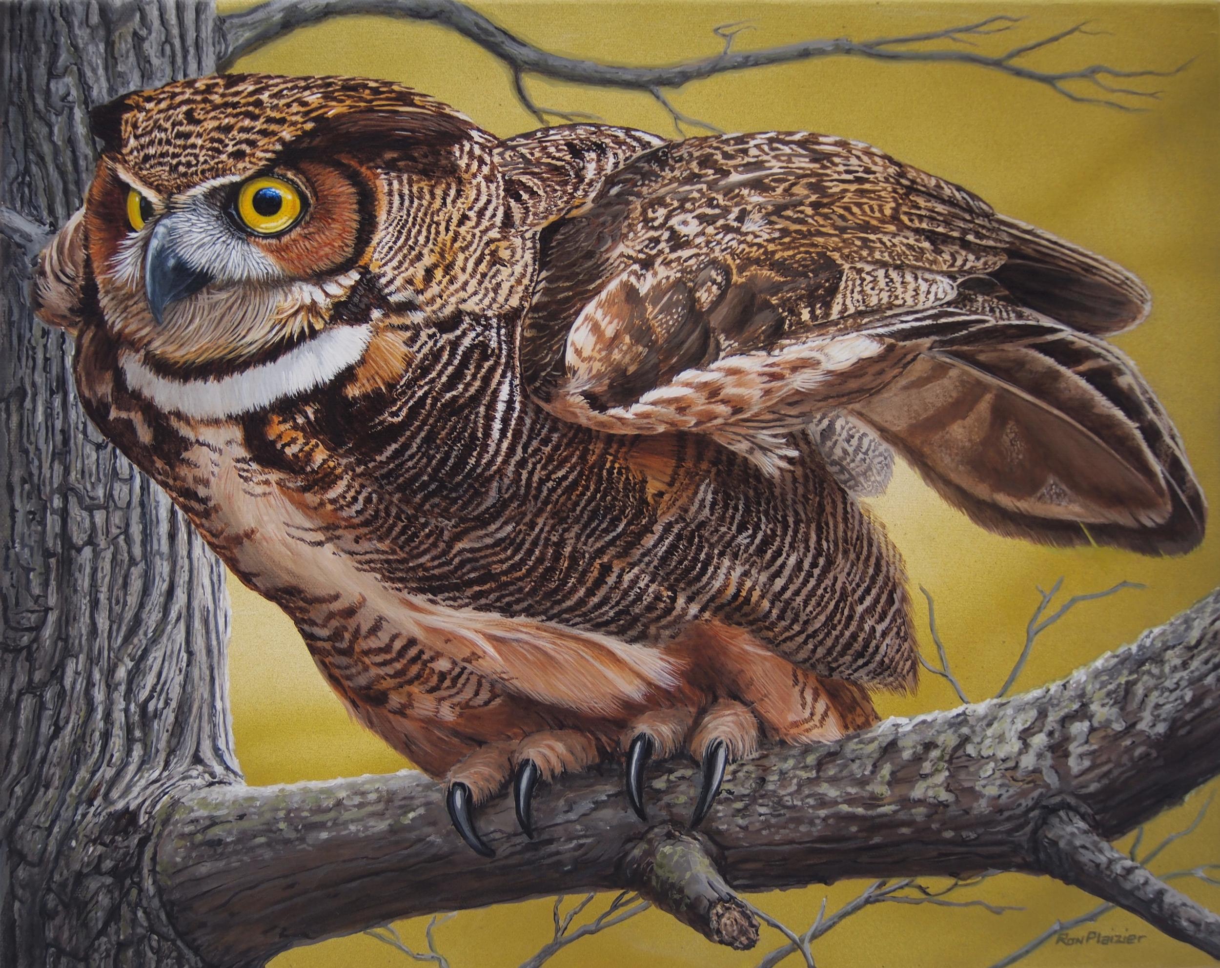 Vantage Point - Horned Owl