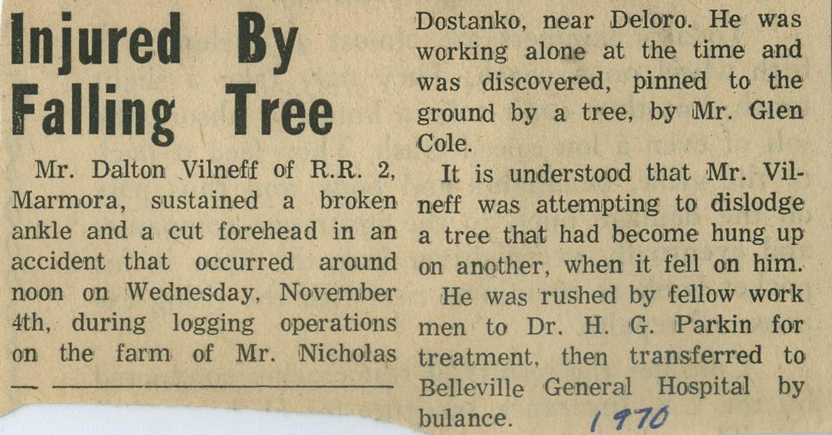 1970 dalton vilneff